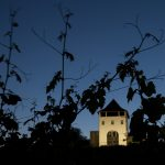 Crama seara degustare vinuri